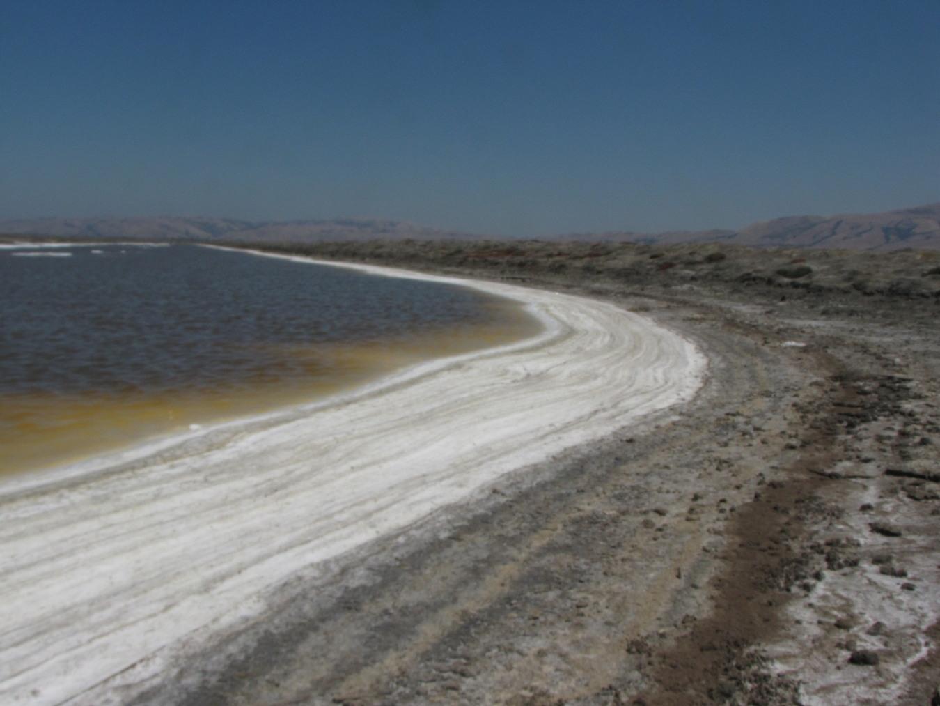 summer-salt-pond