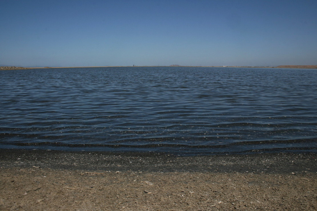 alviso-slough-salt-pond